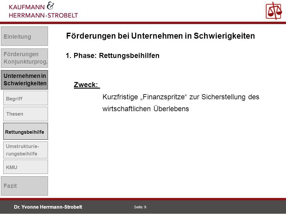 Dr.Yvonne Herrmann-Strobelt SS08 Seite: 10 Einleitung Förderungen Konjunkturprog.