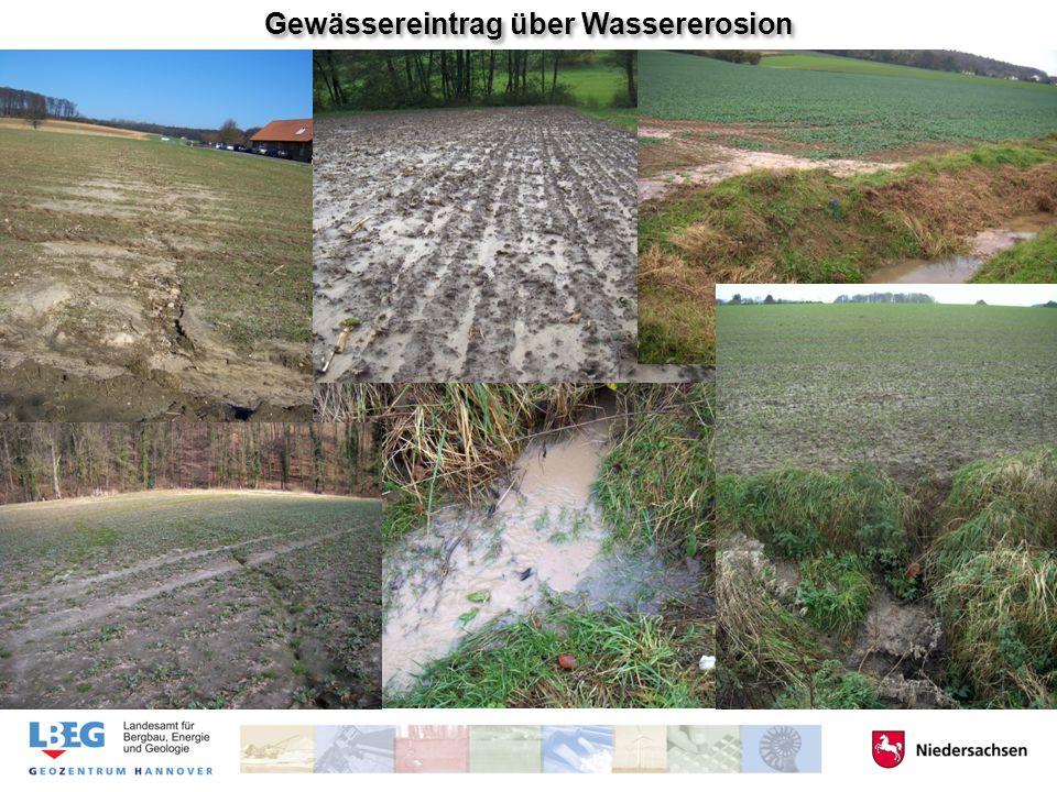 Gewässereintrag über Wassererosion
