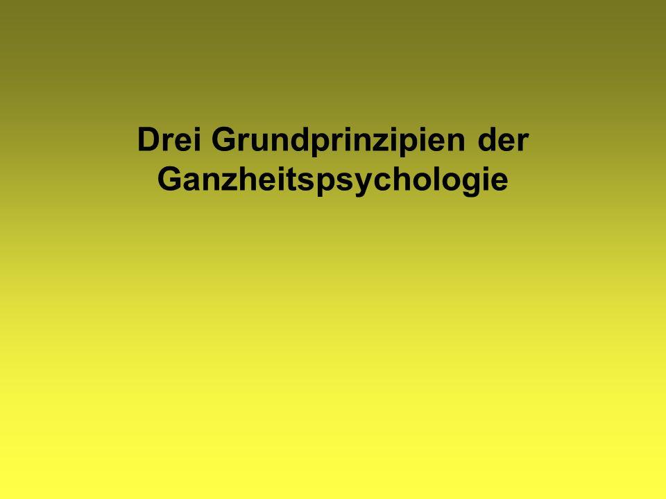 Drei Grundprinzipien der Ganzheitspsychologie