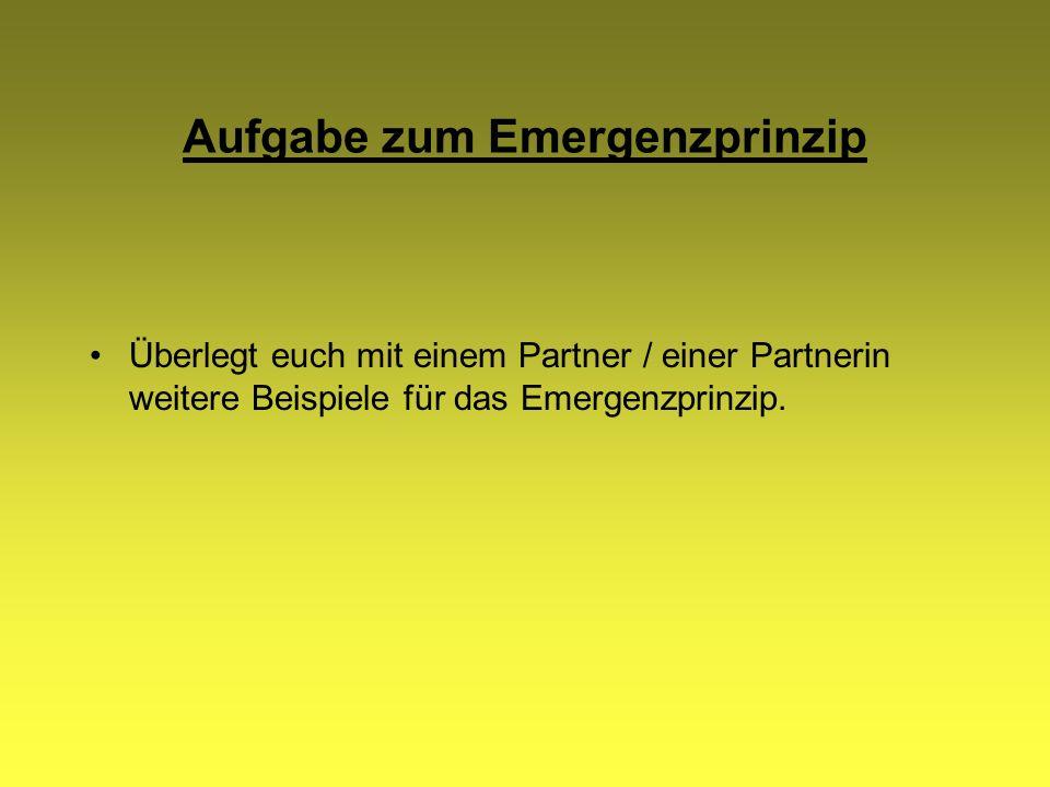 Aufgabe zum Emergenzprinzip Überlegt euch mit einem Partner / einer Partnerin weitere Beispiele für das Emergenzprinzip.