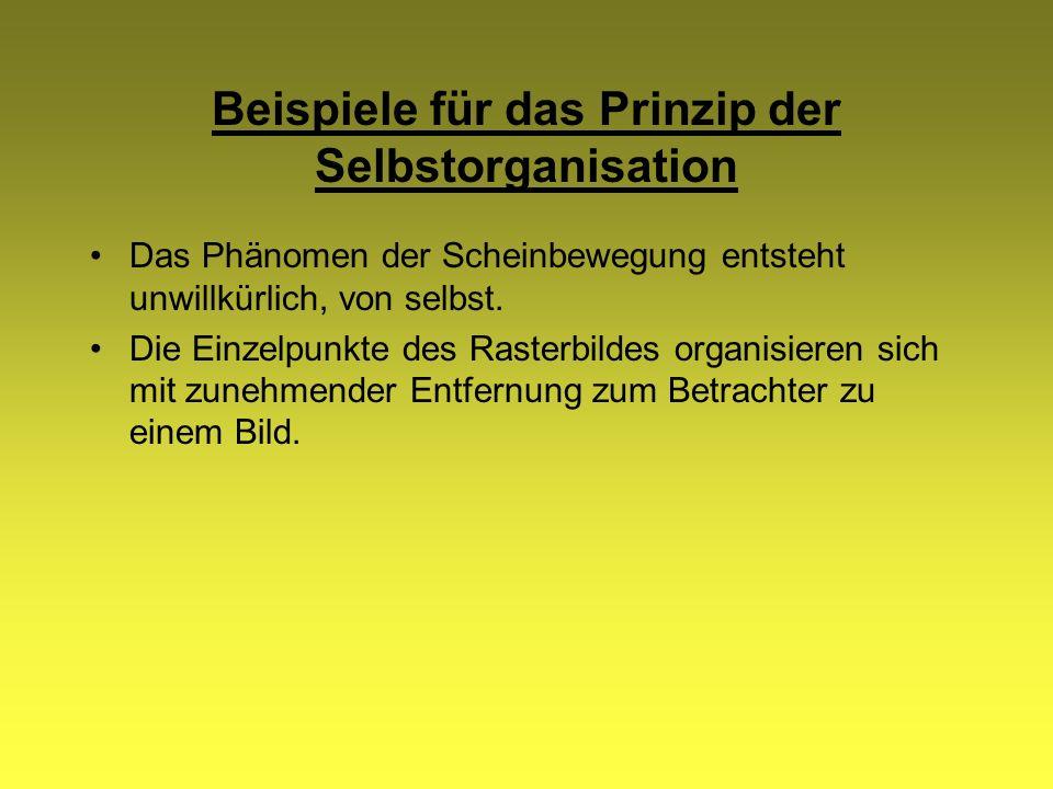 Beispiele für das Prinzip der Selbstorganisation Das Phänomen der Scheinbewegung entsteht unwillkürlich, von selbst. Die Einzelpunkte des Rasterbildes