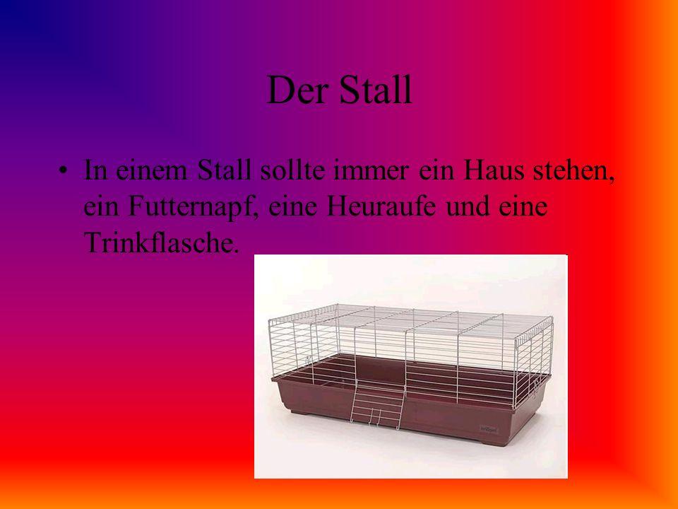 Der Stall Der Stall sollte nicht zu klein sein.