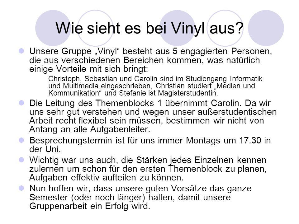 Wie sieht es bei Vinyl aus? Unsere Gruppe Vinyl besteht aus 5 engagierten Personen, die aus verschiedenen Bereichen kommen, was natürlich einige Vorte