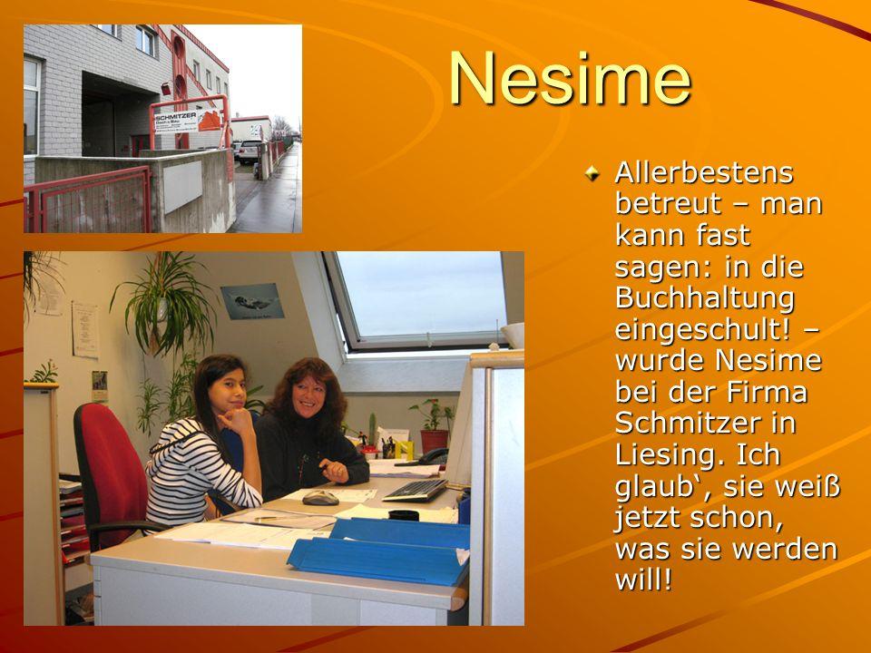 Nesime Allerbestens betreut – man kann fast sagen: in die Buchhaltung eingeschult! – wurde Nesime bei der Firma Schmitzer in Liesing. Ich glaub, sie w