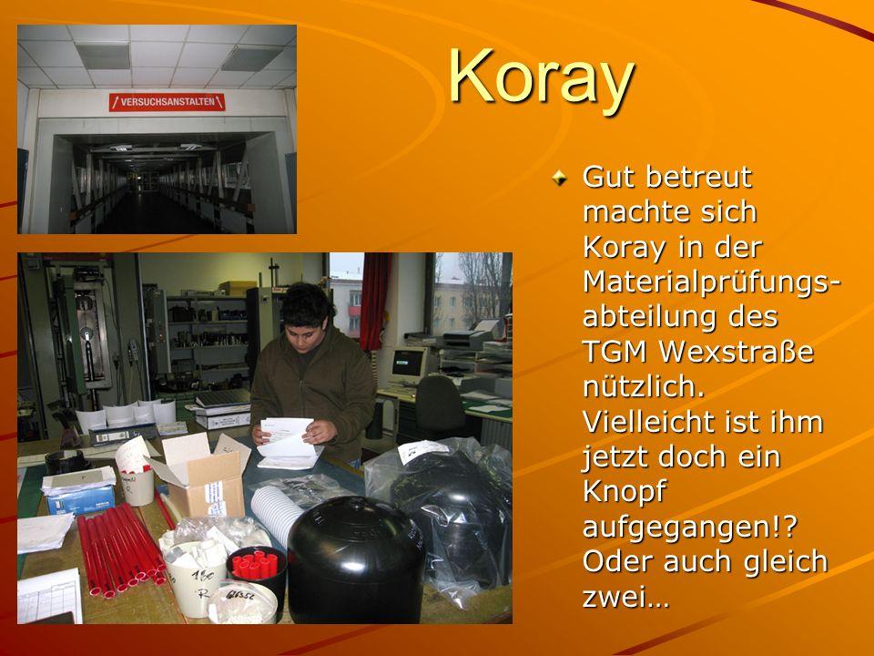 Koray Gut betreut machte sich Koray in der Materialprüfungs- abteilung des TGM Wexstraße nützlich. Vielleicht ist ihm jetzt doch ein Knopf aufgegangen