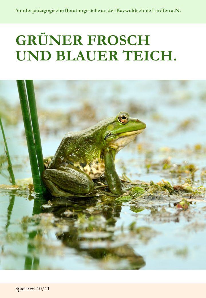 Sonderpädagogische Beratungsstelle an der Kaywaldschule Lauffen a.N. Spielkreis 10/11 GRÜNER FROSCH UND BLAUER TEICH.