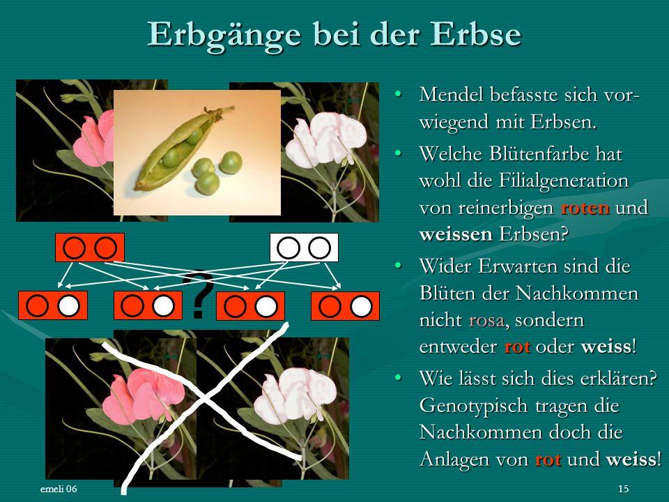 emeli 0615 Erbgänge bei der Erbse Mendel befasste sich vor- wiegend mit Erbsen.Mendel befasste sich vor- wiegend mit Erbsen. Welche Blütenfarbe hat wo