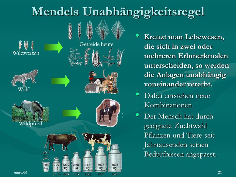 emeli 0621 Mendels Unabhängigkeitsregel Kreuzt man Lebewesen, die sich in zwei oder mehreren Erbmerkmalen unterscheiden, so werden die Anlagen unabhän