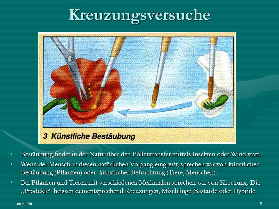 emeli 069 Kreuzungsversuche Bestäubung findet in der Natur über den Pollentransfer mittels Insekten oder Wind statt.Bestäubung findet in der Natur übe