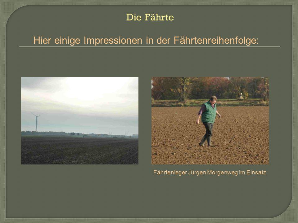 Hier einige Impressionen in der Fährtenreihenfolge: Fährtenleger Jürgen Morgenweg im Einsatz