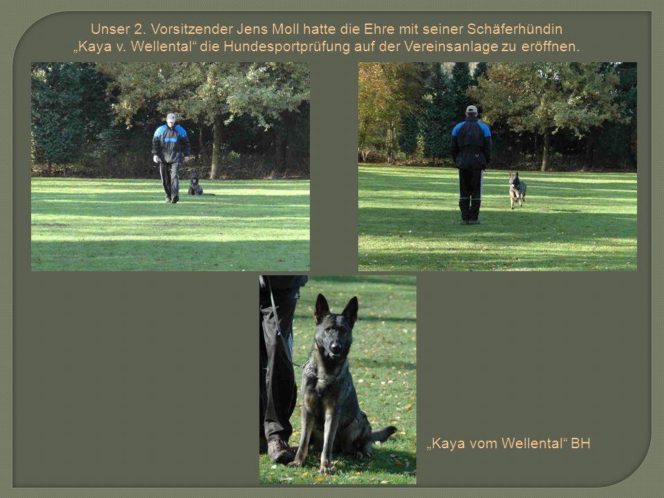 Unser 2. Vorsitzender Jens Moll hatte die Ehre mit seiner Schäferhündin Kaya v. Wellental die Hundesportprüfung auf der Vereinsanlage zu eröffnen. Kay