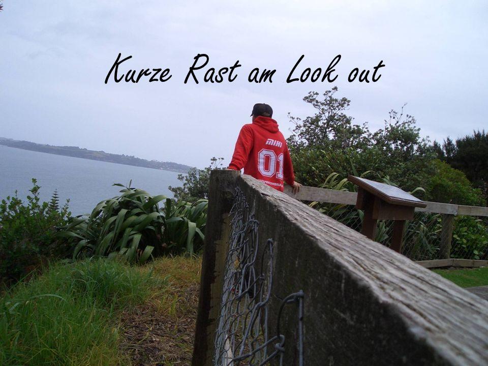 Kurze Rast am Look out