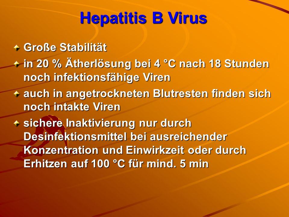 Hepatitis B Virus Große Stabilität in 20 % Ätherlösung bei 4 °C nach 18 Stunden noch infektionsfähige Viren auch in angetrockneten Blutresten finden s