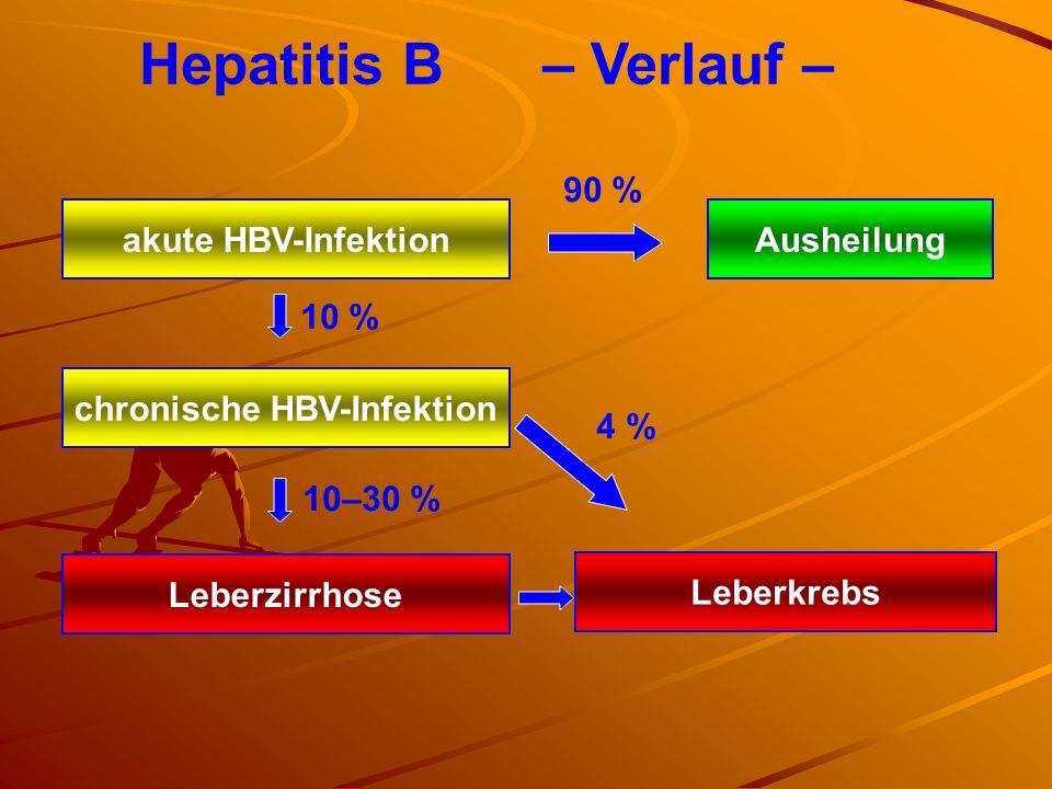 Hepatitis B – Verlauf – chronische HBV-Infektion Leberzirrhose Leberkrebs akute HBV-InfektionAusheilung 90 % 10 % 10–30 % 4 %