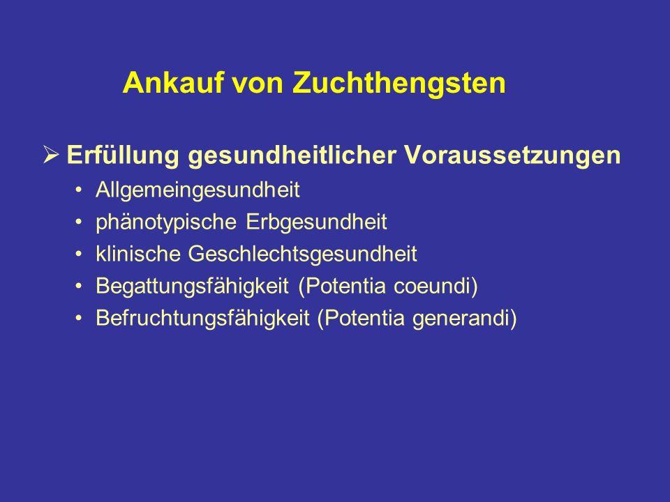 Ankauf von Zuchthengsten Erfüllung gesundheitlicher Voraussetzungen Allgemeingesundheit phänotypische Erbgesundheit klinische Geschlechtsgesundheit Begattungsfähigkeit (Potentia coeundi) Befruchtungsfähigkeit (Potentia generandi)