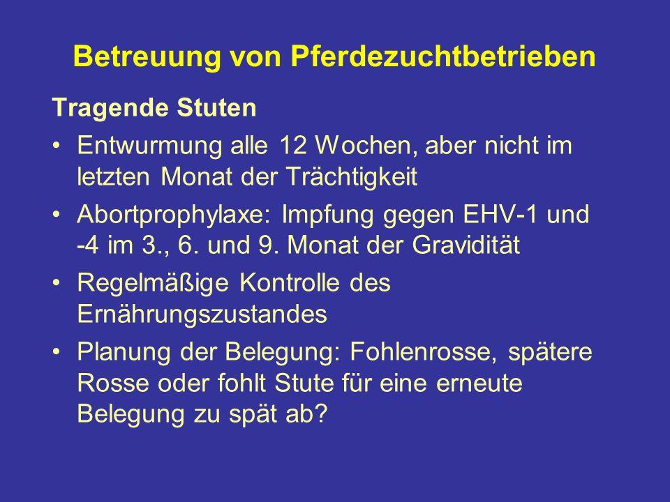 Betreuung von Pferdezuchtbetrieben Tragende Stuten Entwurmung alle 12 Wochen, aber nicht im letzten Monat der Trächtigkeit Abortprophylaxe: Impfung gegen EHV-1 und -4 im 3., 6.
