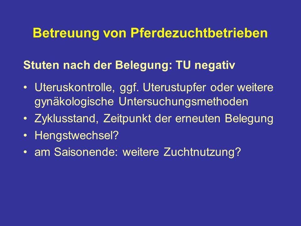 Betreuung von Pferdezuchtbetrieben Stuten nach der Belegung: TU negativ Uteruskontrolle, ggf.