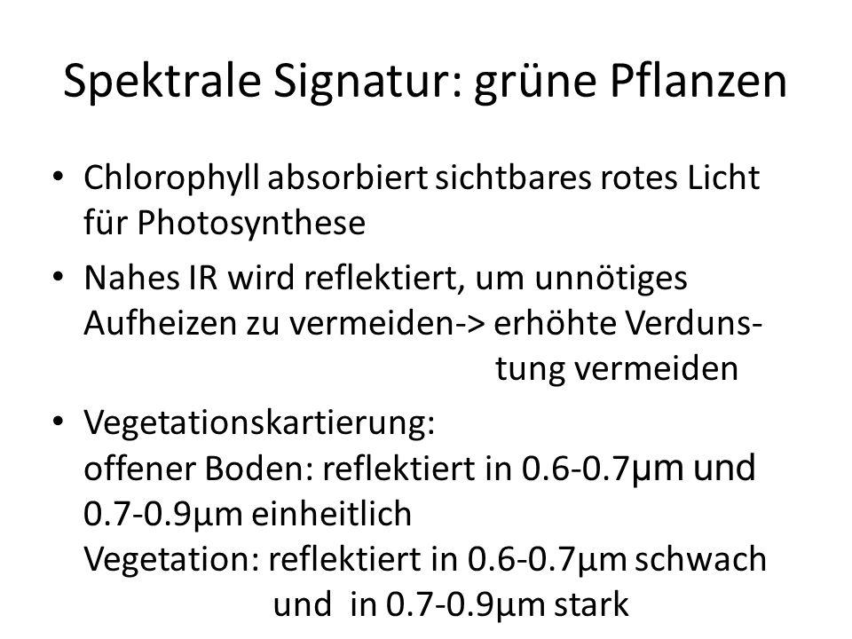 Spektrale Signatur: grüne Pflanzen Chlorophyll absorbiert sichtbares rotes Licht für Photosynthese Nahes IR wird reflektiert, um unnötiges Aufheizen zu vermeiden-> erhöhte Verduns- tung vermeiden Vegetationskartierung: offener Boden: reflektiert in 0.6-0.7 μm und 0.7-0.9μm einheitlich Vegetation: reflektiert in 0.6-0.7μm schwach und in 0.7-0.9μm stark
