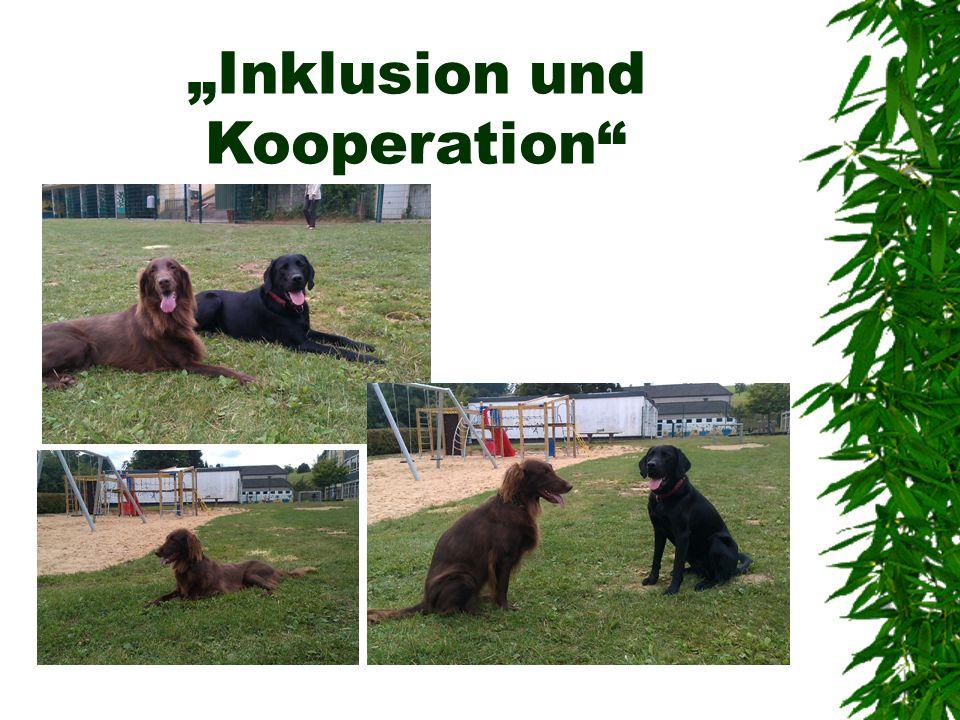 Literaturhinweise Beetz, Andrea: Hunde im Schulalltag. Grundlagen und Praxis. München 2013 2 Jablonowski, Dr. Konstanze und Claudia Köse: Co-Pädagoge