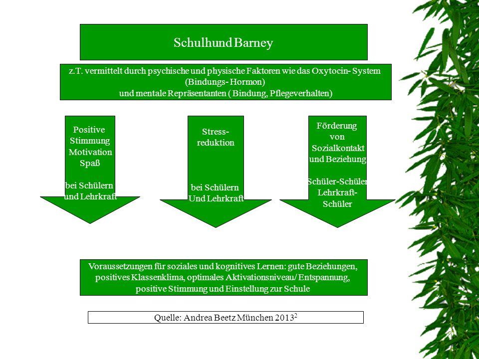 Methode 4. Verbesserung der Kommunikationsfähigkeit - verbal - nonverbal 5. Ganzheitliche Förderung - physisch - psychisch - emotional - sozial