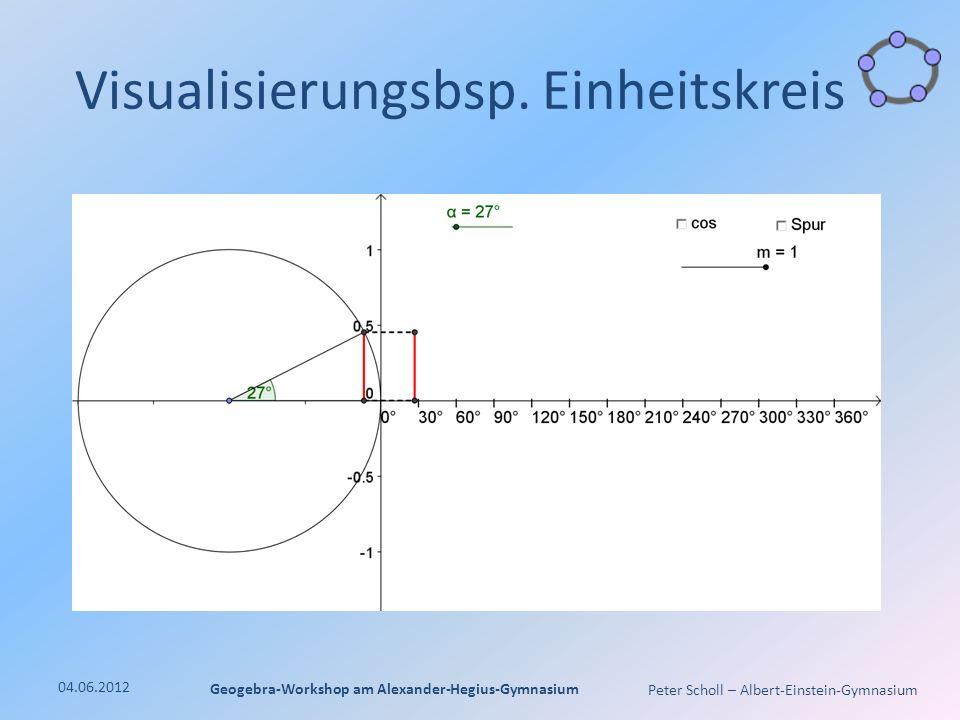 Peter Scholl – Albert-Einstein-Gymnasium Visualisierungsbsp.