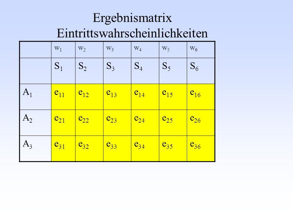 w1w1 w2w2 w3w3 w4w4 w5w5 w6w6 S1S1 S2S2 S3S3 S4S4 S5S5 S6S6 A1A1 e 11 e 12 e 13 e 14 e 15 e 16 A2A2 e 21 e 22 e 23 e 24 e 25 e 26 A3A3 e 31 e 32 e 33