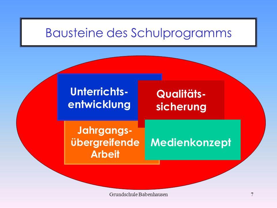 Grundschule Babenhausen8 Unterrichtsentwicklung regelmäßige Trainings für Schüler kontinuierliche Fortbildungen für Lehrer Weiterentwicklung der Arbeit im Team Konsequenzen erarbeiten