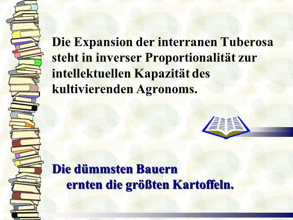Die Expansion der interranen Tuberosa steht in inverser Proportionalität zur intellektuellen Kapazität des kultivierenden Agronoms.