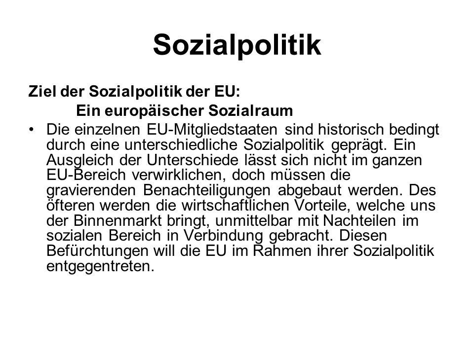 Sozialpolitik Ziel der Sozialpolitik der EU: Ein europäischer Sozialraum Die einzelnen EU-Mitgliedstaaten sind historisch bedingt durch eine unterschi