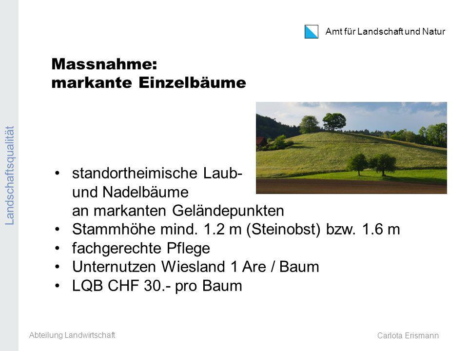 Carlota Erismann Amt für Landschaft und Natur Landschaftsqualität Massnahme: markante Einzelbäume standortheimische Laub- und Nadelbäume an markanten Geländepunkten Stammhöhe mind.