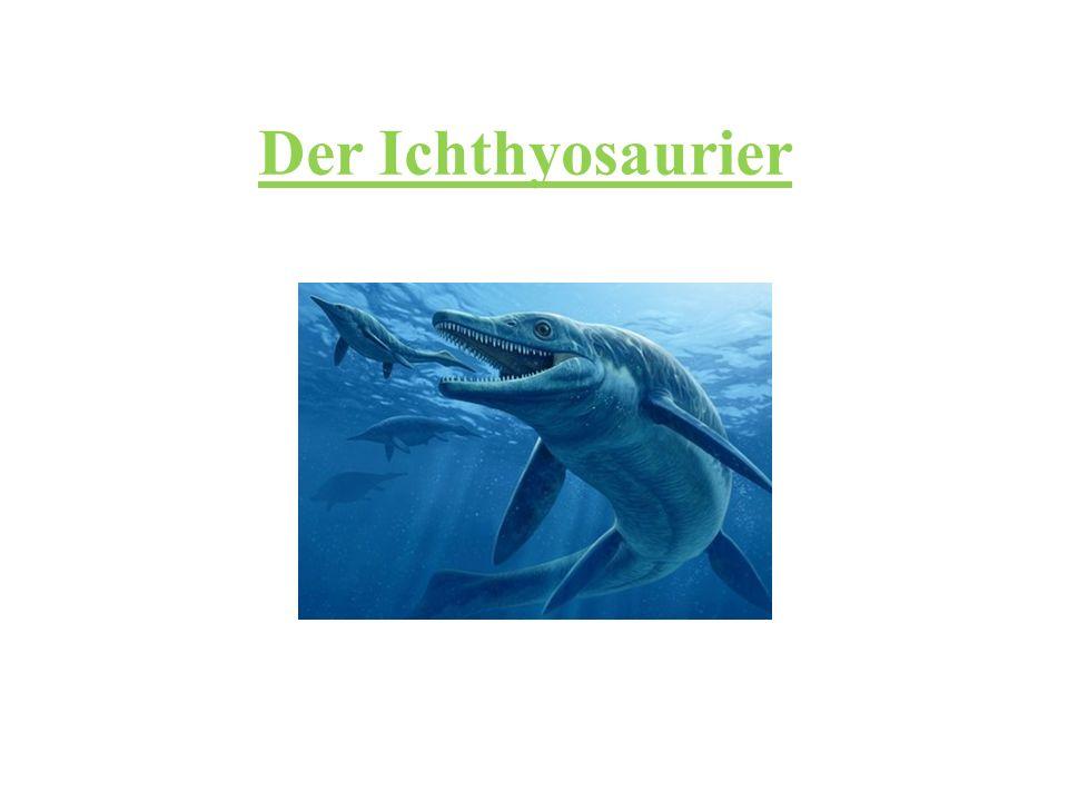 Der Ichthyosaurier
