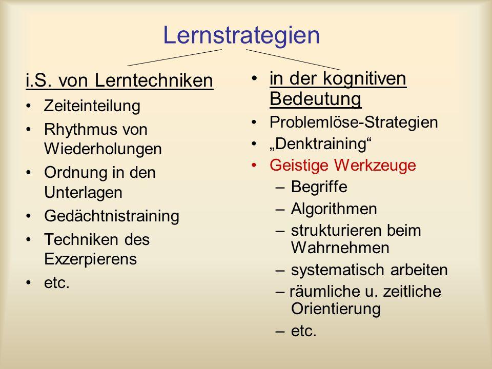 Lernstrategien i.S. von Lerntechniken Zeiteinteilung Rhythmus von Wiederholungen Ordnung in den Unterlagen Gedächtnistraining Techniken des Exzerpiere