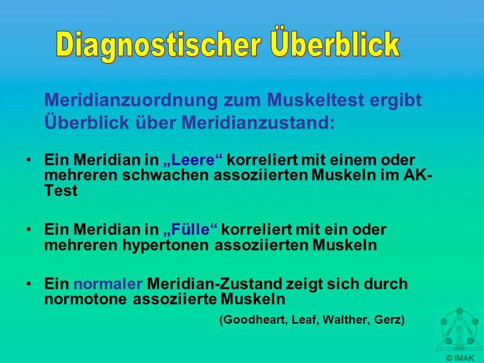 Meridianzuordnung zum Muskeltest ergibt Überblick über Meridianzustand: Ein Meridian in Leere korreliert mit einem oder mehreren schwachen assoziierte