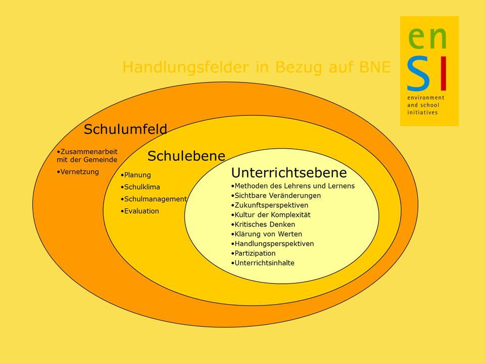 Struktur der Qualitätskriterien Schulpraxis – Fallgeschichten Grundprinzipien – nationale und internationale Sichtweisen Qualitätskriterien – als Ausgangspunkt