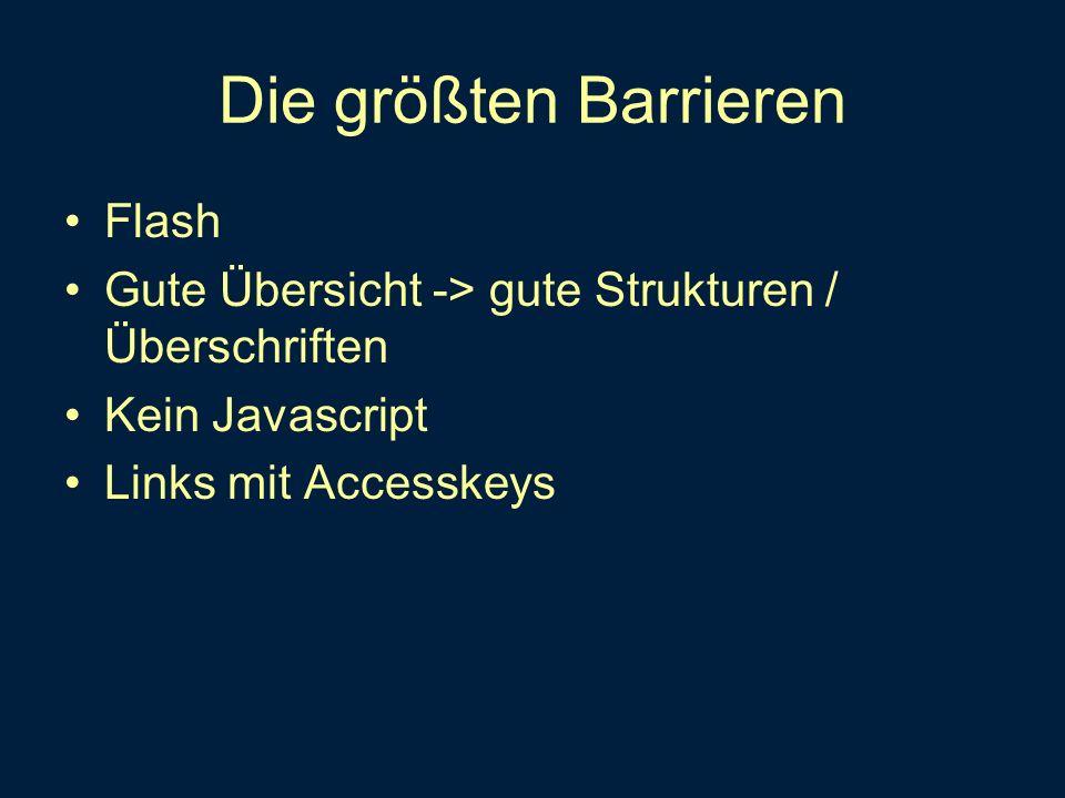 Die größten Barrieren Flash Gute Übersicht -> gute Strukturen / Überschriften Kein Javascript Links mit Accesskeys