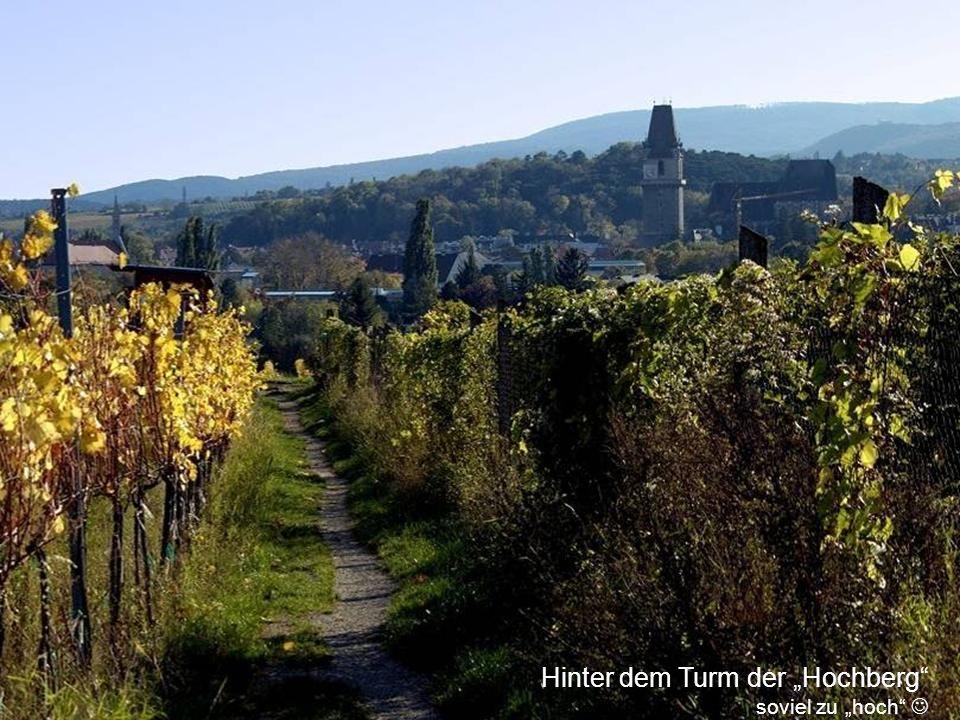 Zeit für einen kleinen Spaziergang durch Perchtoldsdorf Der mittelalterliche Ortskern, der am südlichen Stadtrand von Wien gelegenen Marktgemeinde, wird vom 60 Meter hohen gotischen Wehrturm beherrscht, der unmittelbar neben der gotischen Pfarrkirche steht.