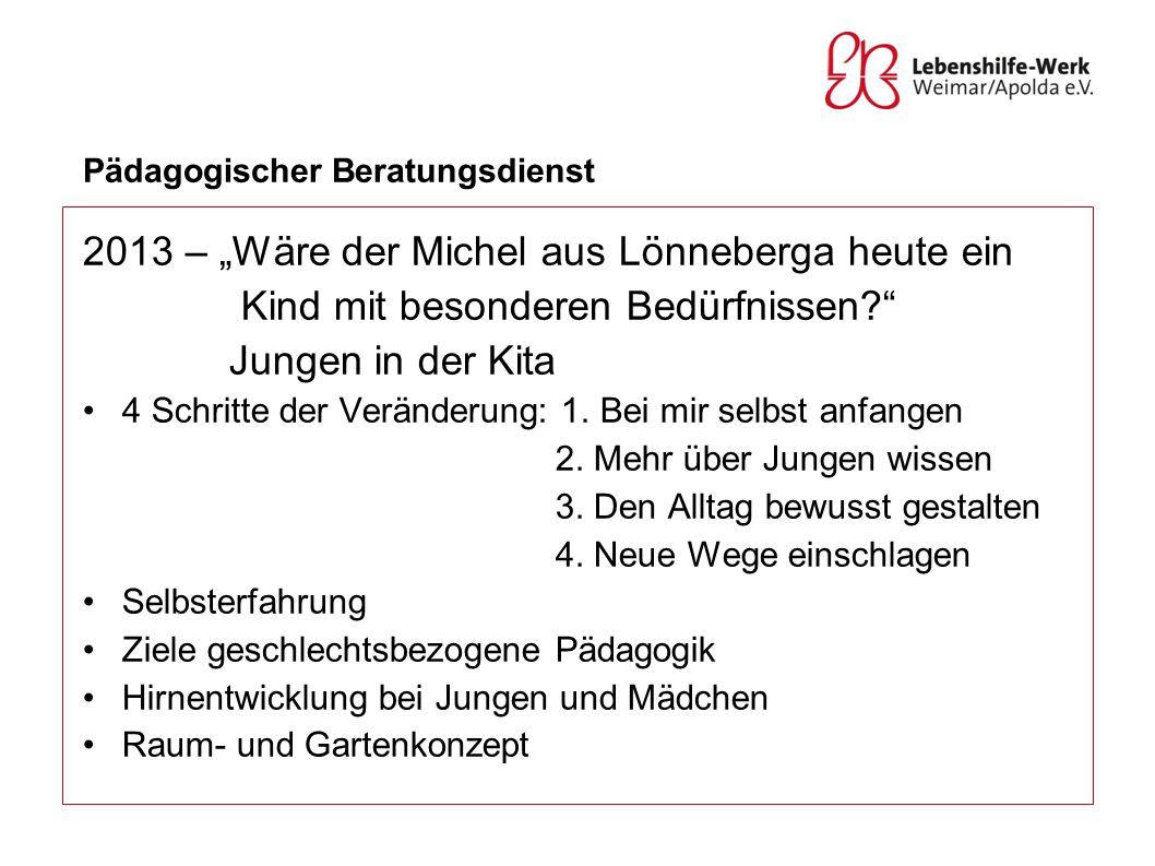 Pädagogischer Beratungsdienst 2013 – Wäre der Michel aus Lönneberga heute ein Kind mit besonderen Bedürfnissen? Jungen in der Kita 4 Schritte der Verä