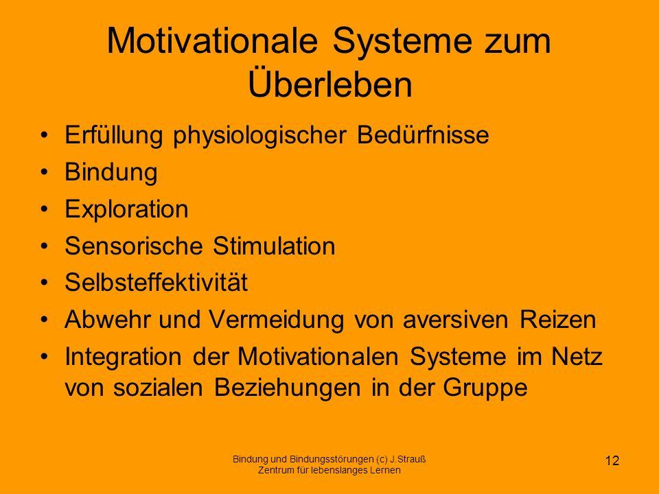 Motivationale Systeme zum Überleben Erfüllung physiologischer Bedürfnisse Bindung Exploration Sensorische Stimulation Selbsteffektivität Abwehr und Ve