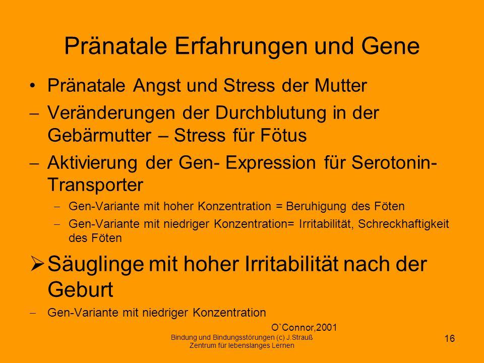 Pränatale Erfahrungen und Gene Pränatale Angst und Stress der Mutter Veränderungen der Durchblutung in der Gebärmutter – Stress für Fötus Aktivierung