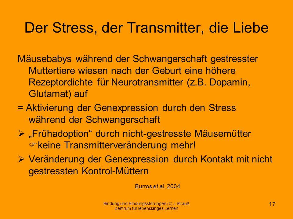 Der Stress, der Transmitter, die Liebe Mäusebabys während der Schwangerschaft gestresster Muttertiere wiesen nach der Geburt eine höhere Rezeptordicht