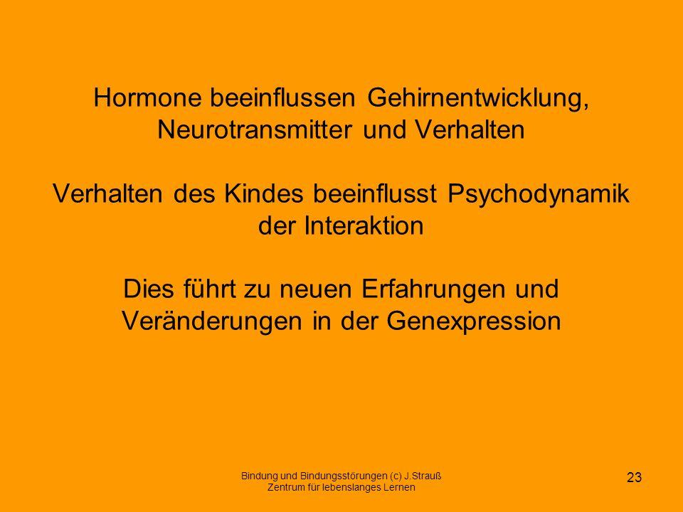Hormone beeinflussen Gehirnentwicklung, Neurotransmitter und Verhalten Verhalten des Kindes beeinflusst Psychodynamik der Interaktion Dies führt zu ne
