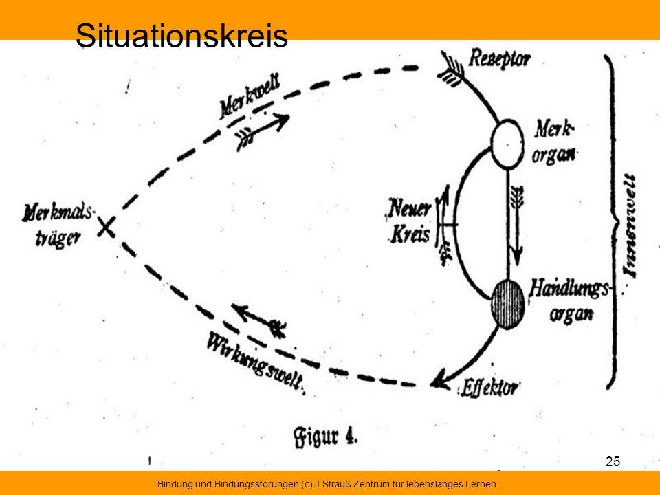 Situationskreis Bindung und Bindungsstörungen (c) J.Strauß Zentrum für lebenslanges Lernen 25