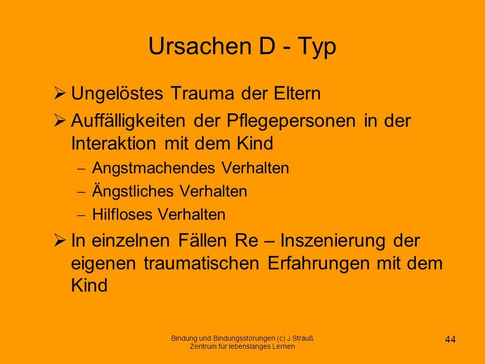 Ursachen D - Typ Ungelöstes Trauma der Eltern Auffälligkeiten der Pflegepersonen in der Interaktion mit dem Kind Angstmachendes Verhalten Ängstliches
