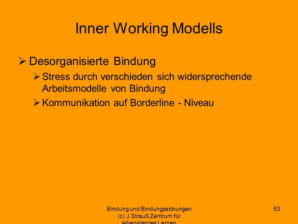 Inner Working Modells Desorganisierte Bindung Stress durch verschieden sich widersprechende Arbeitsmodelle von Bindung Kommunikation auf Borderline -
