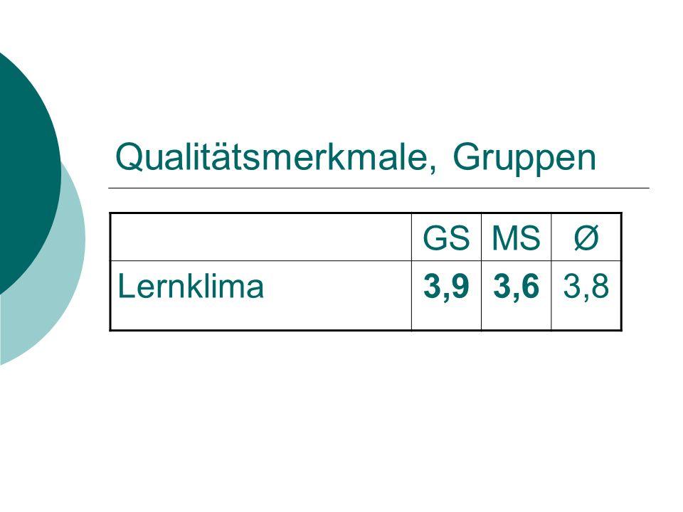 Qualitätsmerkmale, Gruppen GSMSØ Lernklima3,93,63,8