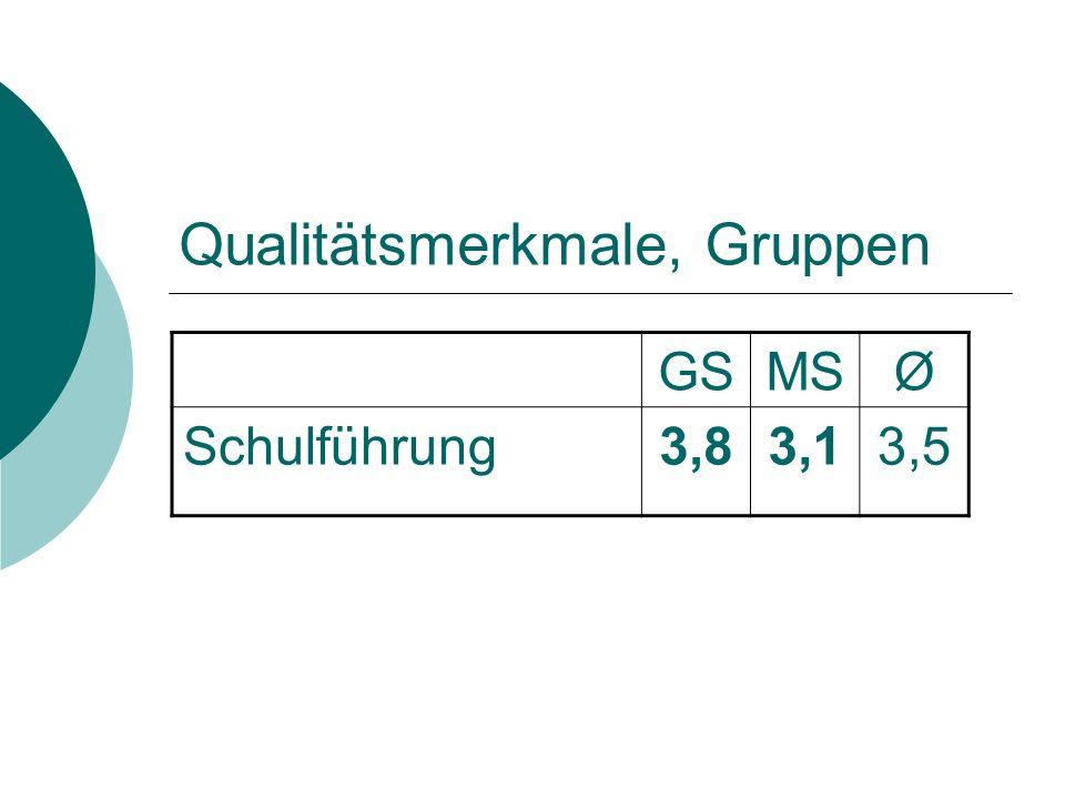 Qualitätsmerkmale, Gruppen GSMSØ Schulführung3,83,13,5