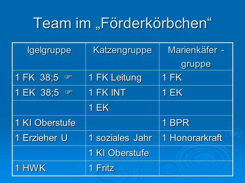 Team im Förderkörbchen IgelgruppeKatzengruppe Marienkäfer - gruppe 1 FK 38;5 1 FK 38;5 1 FK Leitung 1 FK 1 EK 38;5 1 EK 38;5 1 FK INT 1 EK 1 KI Oberst