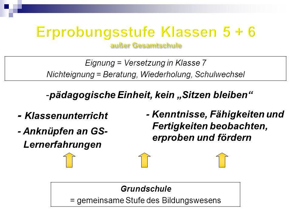 - Klassenunterricht - Kenntnisse, Fähigkeiten und Fertigkeiten beobachten, erproben und fördern - Anknüpfen an GS- Lernerfahrungen -pädagogische Einhe