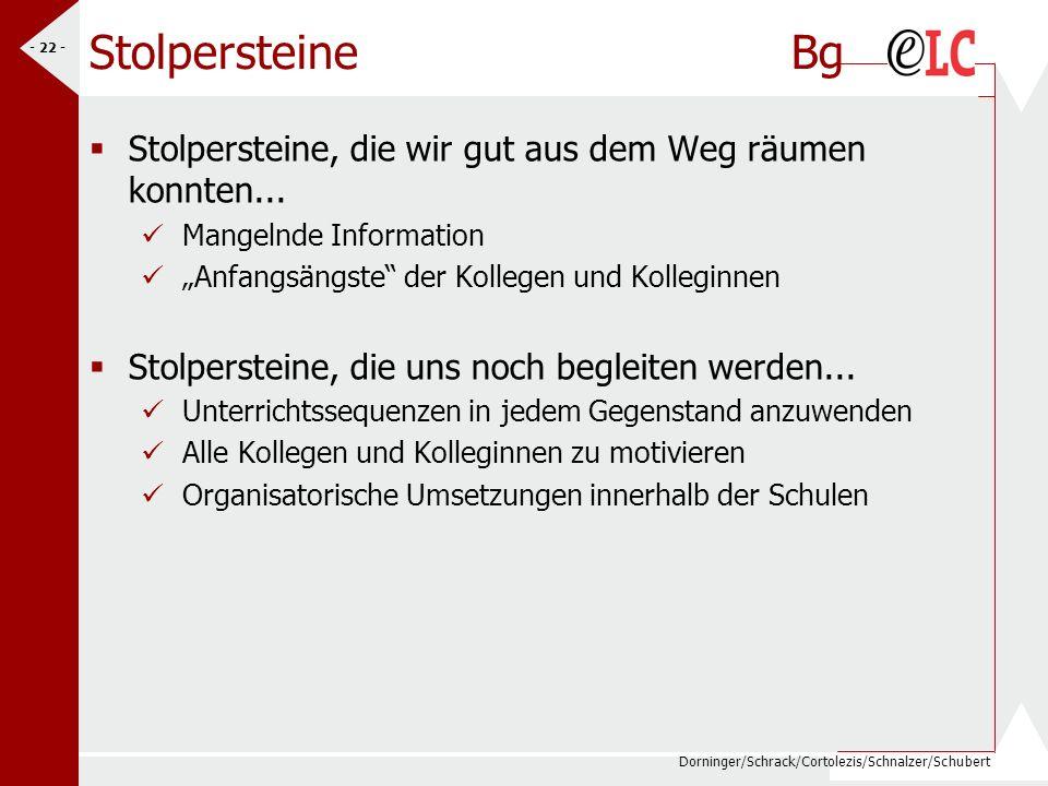 Dorninger/Schrack/Cortolezis/Schnalzer/Schubert - 22 - Stolpersteine Bg Stolpersteine, die wir gut aus dem Weg räumen konnten... Mangelnde Information