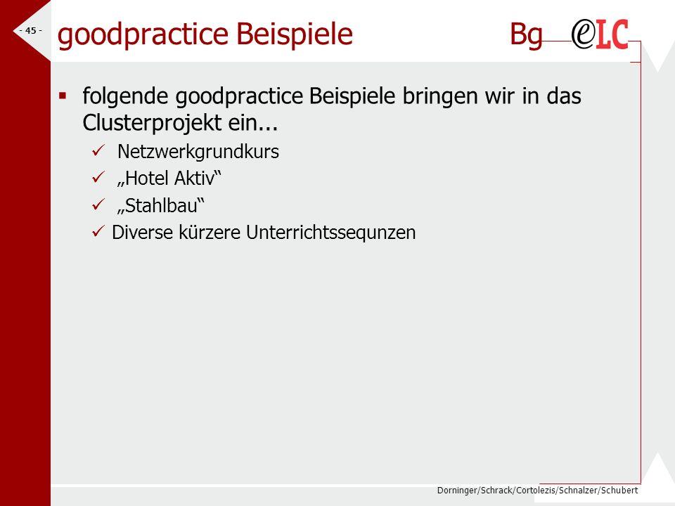 Dorninger/Schrack/Cortolezis/Schnalzer/Schubert - 45 - goodpractice Beispiele Bg folgende goodpractice Beispiele bringen wir in das Clusterprojekt ein